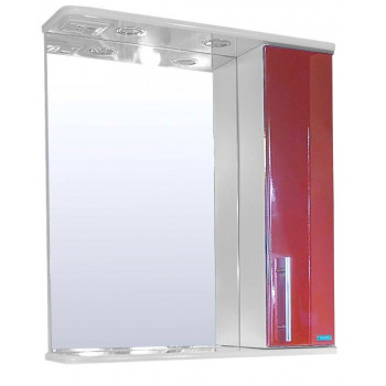 Зеркальный шкаф со светильником №3-60 Ф4 (бордо)