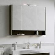 Зеркальный шкаф Alavann Layra 100
